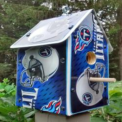 Tennessee Tit s birdhouse